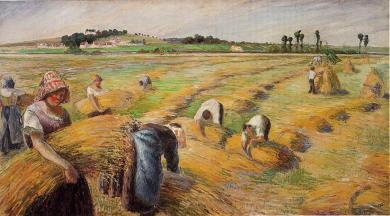 Camille_Pissarro_-_The_Harvest